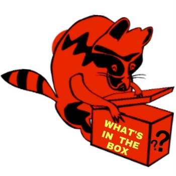 Black & Red Racoon With Box