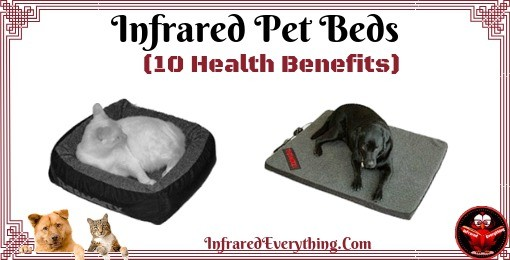Dog & Cat Bed
