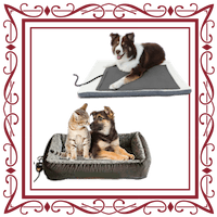 Dogs & Cats On Their Beds